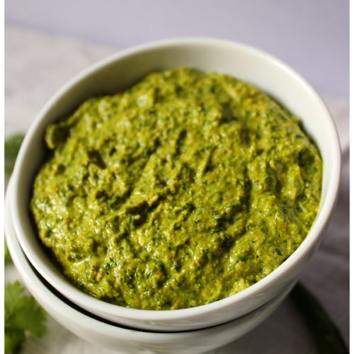 Coriander chutney - kothiemmera pacahdi close up picture