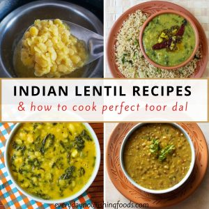 various indian lentils collage picture