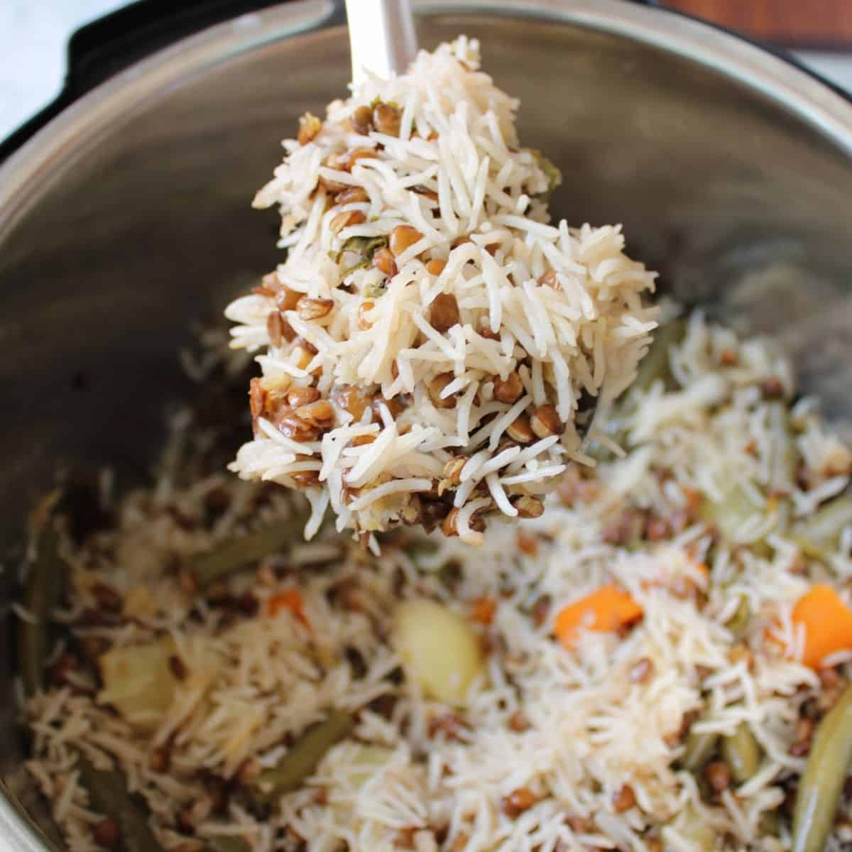 brown lentils and rice pilaf in an instant pot